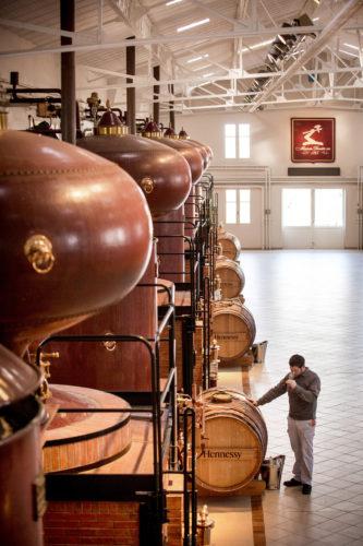 Hennessy-DistillerieduPeu JasHennessyandCo-AlainBenoit02-jpg
